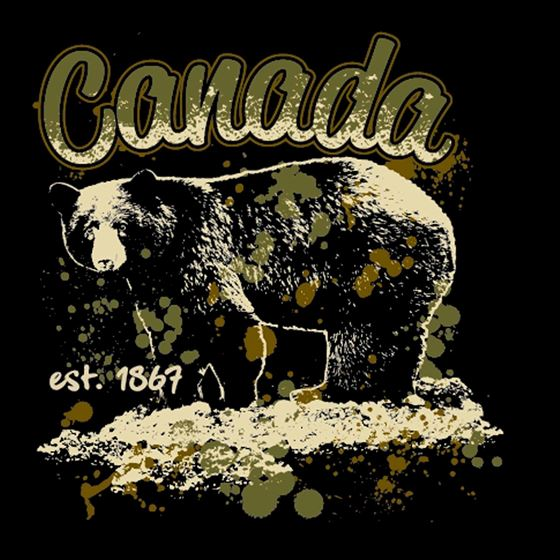 Picture of 155 Bear Splatter Paint Canada